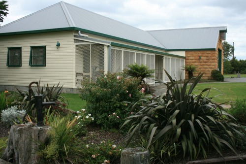 Cattery Whangarei, for great care for your cats